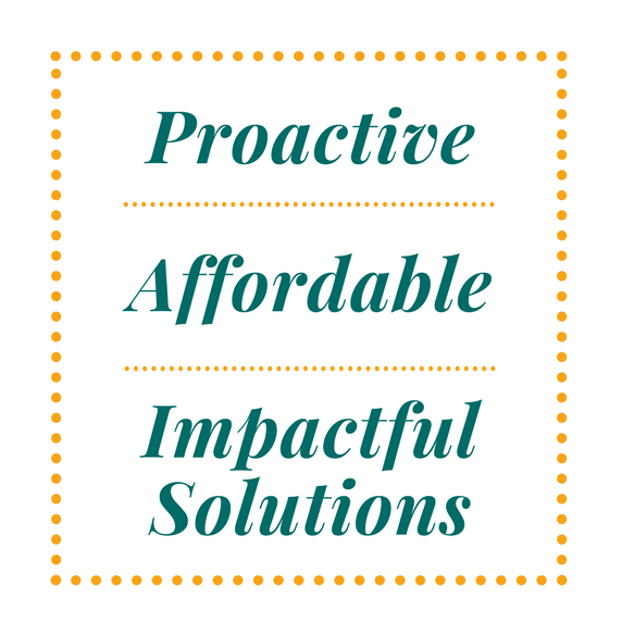 Proactive, Affordable, Impactful